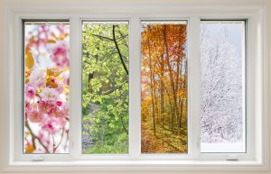 Window on the inside of a home showing the change in seasons